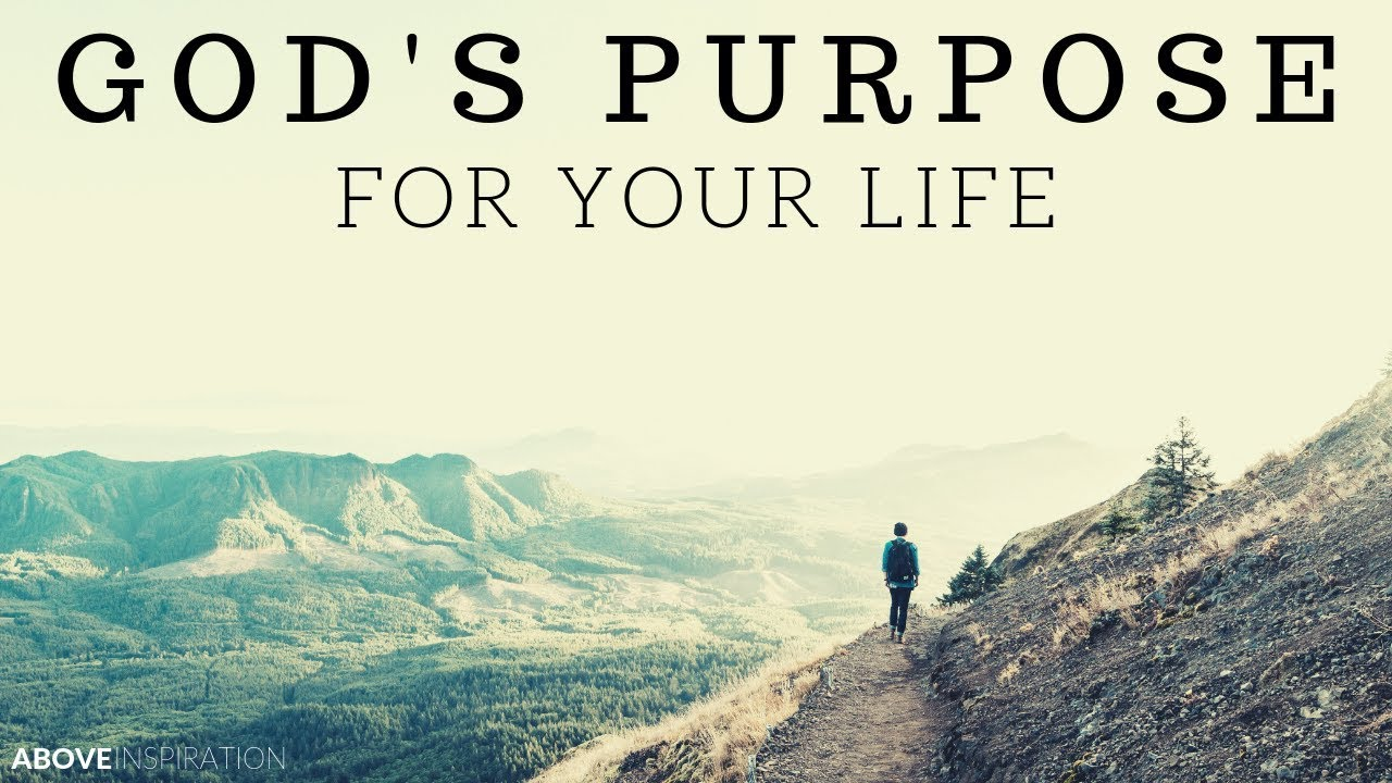 The 5 Purposes of Life