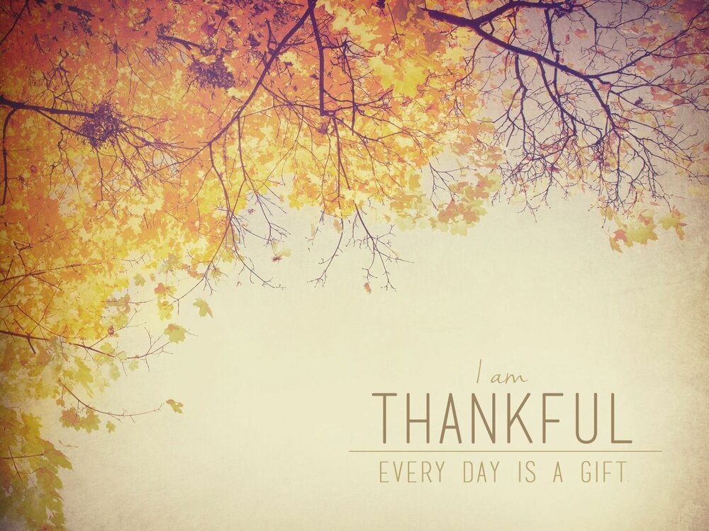 November's Wise Reminders